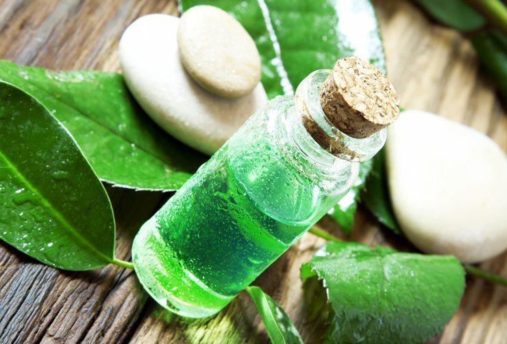 Teebaumöl hat eine sehr stark desinfizierende und heilende Wirkung (Bild: Liljam / Shutterstock.com)