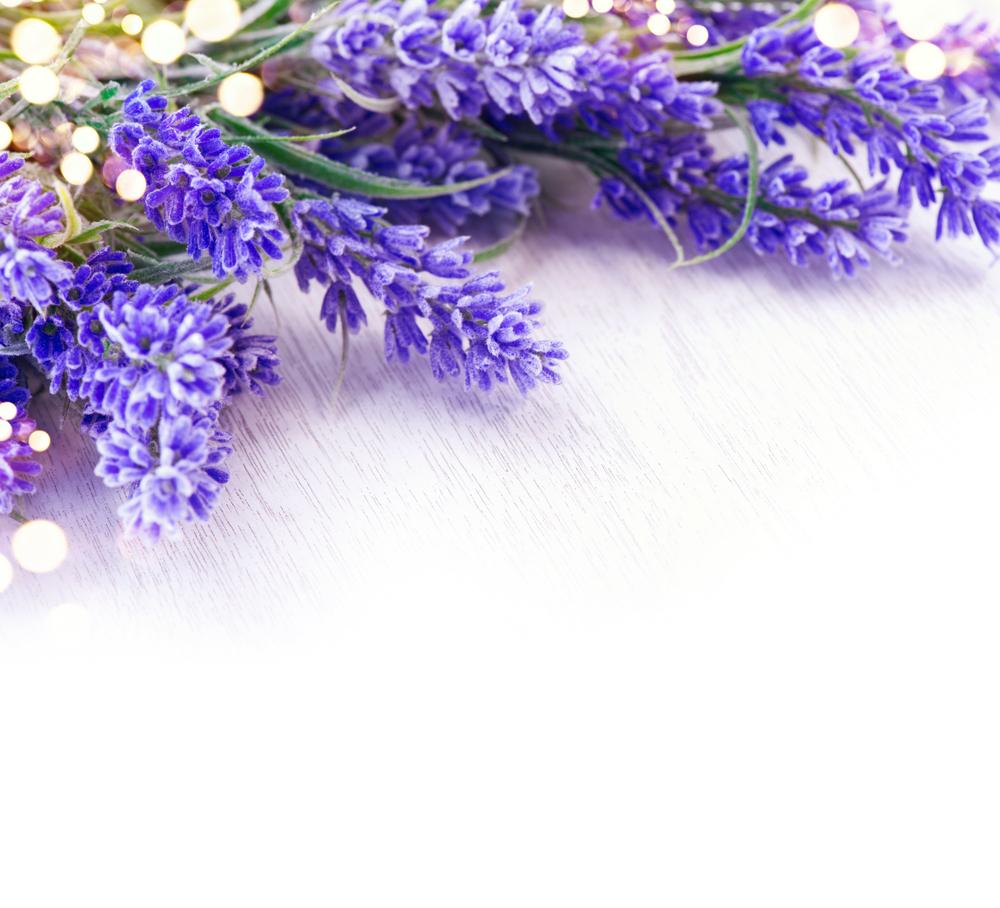 Schön mit Lavendelblüten (Bild: Subbotina Ann - shutterstock.com)