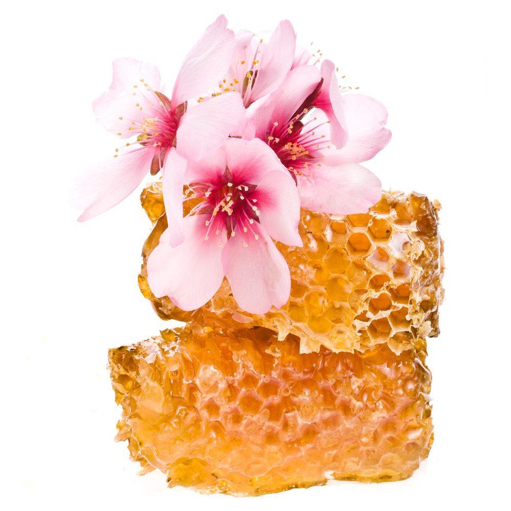 Blütenhonig. (Bild: ANCH / Shutterstock.com)
