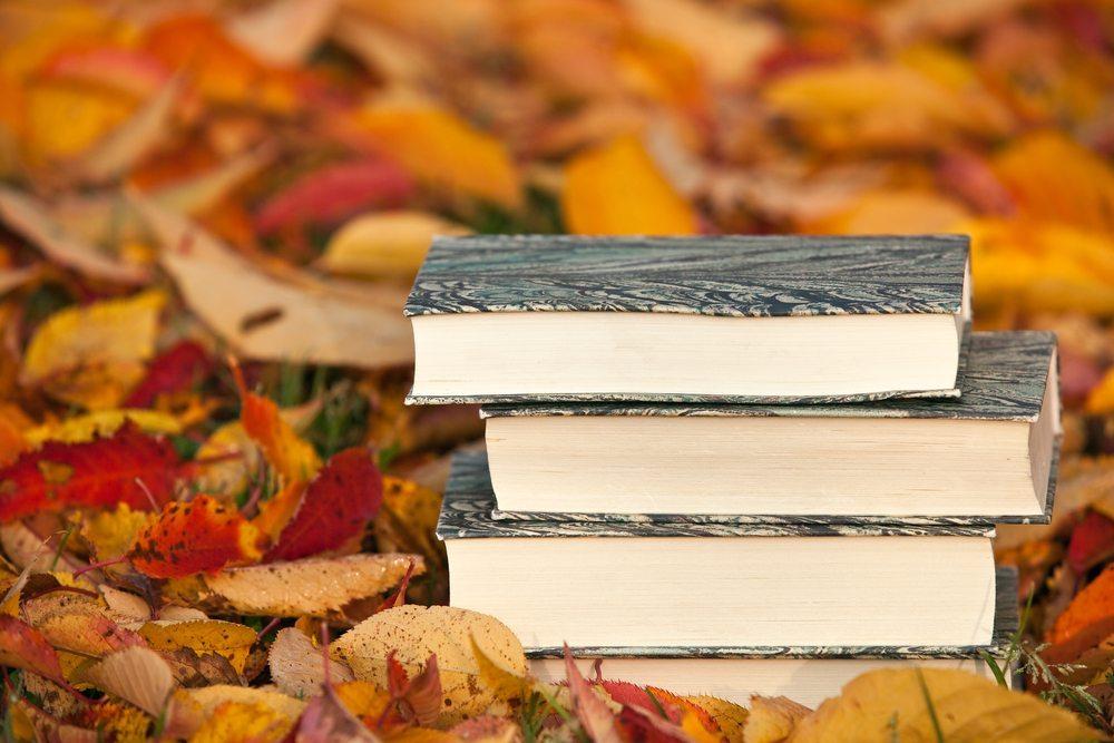 Der Herbst ist die ideale Lesezeit. Wenn ein gutes Buch die Phantasie mit auf die Reise nimmt, entspannen Körper und Geist. (Bild: UbjsP / Shutterstock.com)