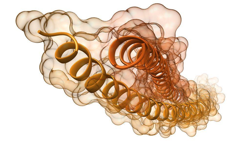 Zum grossen Teil bestehen Haare und Nägel aus Keratin. (Bild: ermess / Shutterstock.com)
