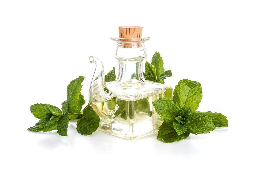 Sammeln oder besorgen Sie rechtzeitig dekorative Flaschen für Ihre Kräuterölkreationen. (Bild: grafvision / Shutterstock.com)