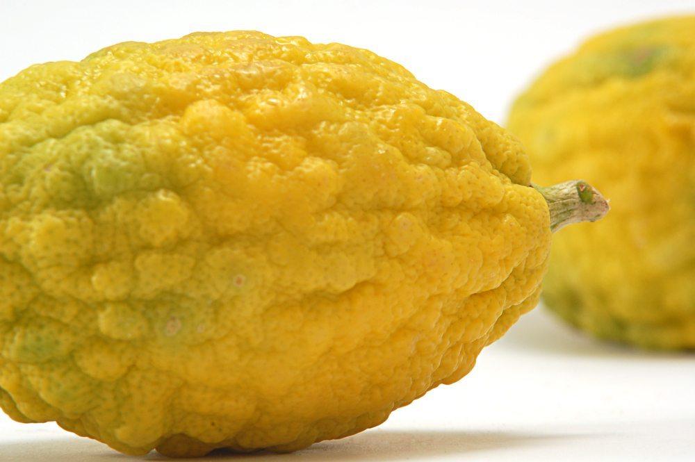Die Zitrone, besser gesagt die Zitronensäure, ist für ihre bleichende Wirkung bekannt. (Bild: Asya Babushkina / Shutterstock.com)