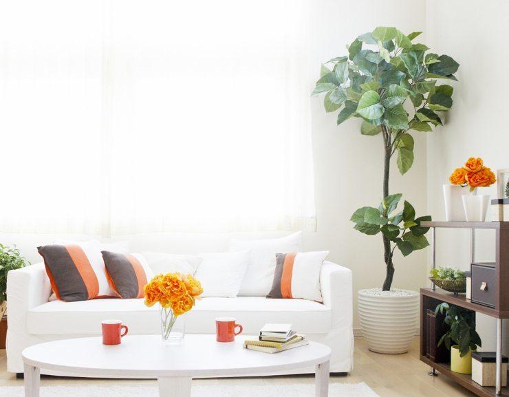 Das Sofa sollte mit Sorgfalt ausgewählt werden (Bild: © Blinka - shutterstock.com)