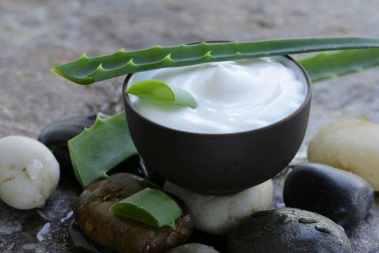 Frisches Aloe-vera-Gel kann in Joghurt oder im Müsli konsumiert werden. (Bild: © Dream79 - shutterstock.com)