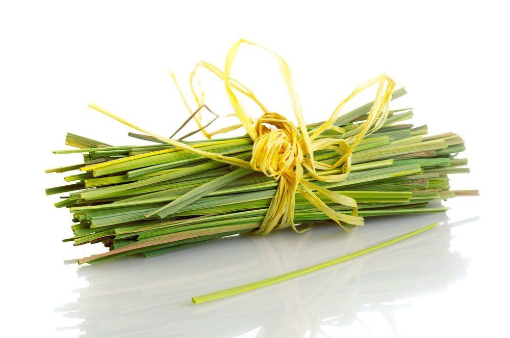 Die meisten Insekten deuten den Citronella-Duft als stechend und bedrohlich. (Bild: nanka / Shutterstock.com)