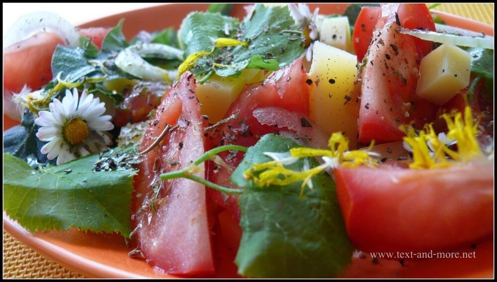 Lindenblätter-Salat mit Käse (Bild: © text-and-more.net)