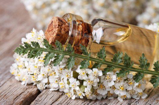 Ein Hausmittel, das beim Sonnenbrand effektiv hilft, ist das Schafgarbe-Bad. (Bild: FomaA / Shutterstock.com)