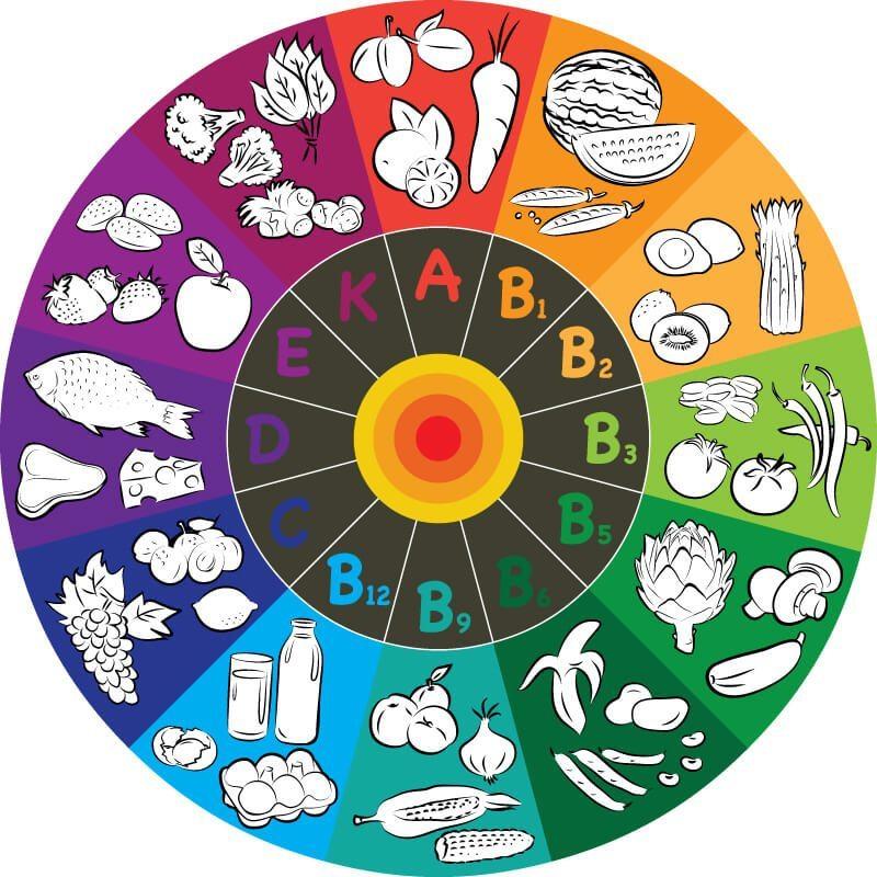 Vitamine sind essenziell, also lebensnotwendig, und müssen daher ausreichend über die Nahrung zugeführt werden. (Bild: © ra2studio - shutterstock.com)