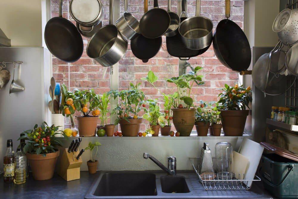 Südeuropäer verwenden zum Abschmecken und Würzen ihrer Gerichte frische Kräuter. (Bild: © bikeriderlondon - shutterstock.com)