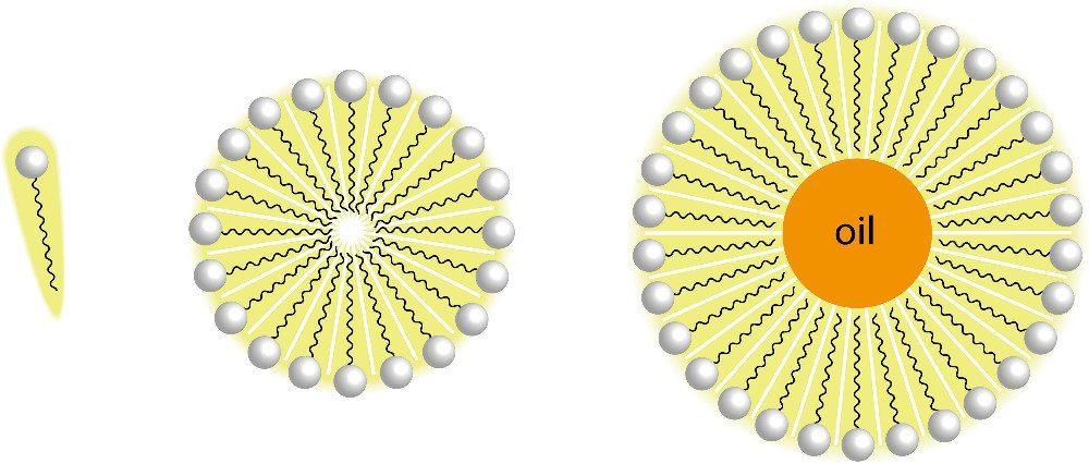 Wirkungsprinzip von Mizellenwasser (Bild: magnetix / Shutterstock.com)