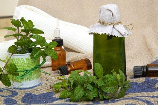 Pfefferminz-Shampoo macht Haare kräftig und glänzend. (Bild: Tolikoff Photography / Shutterstock.com)