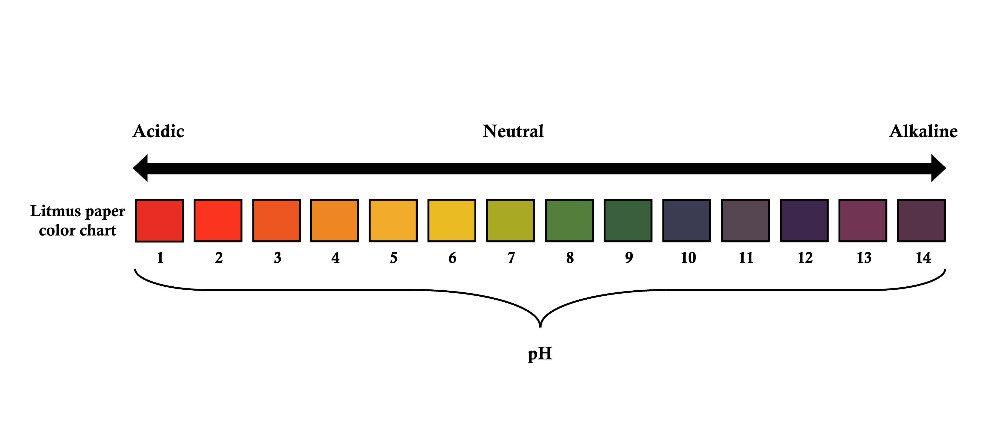 Lackmustest: Links sauer, Mitte neutral, rechts alkalisch. Ein ph-Wert des menschlichen Organismus von 7,4 gilt als natürlich. (Bild: © Biro Emoke - shutterstock.com)