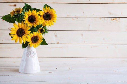 Sonnenblumen machen sich auch zu Hause in einer Vase sehr gut.