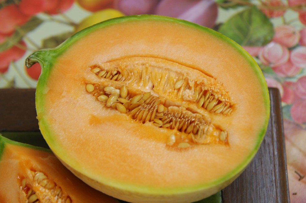 Die Charentis-Melone (Bild: © minicel73 - fotolia.com)