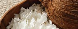 kokochips-Marie C Fields -shutterstock_116800117
