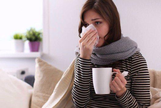 Wie können kaskadenfermentierte Biokonzentrate meine Immunabwehr unterstützen? (Bild: © sheff - shutterstock.com)
