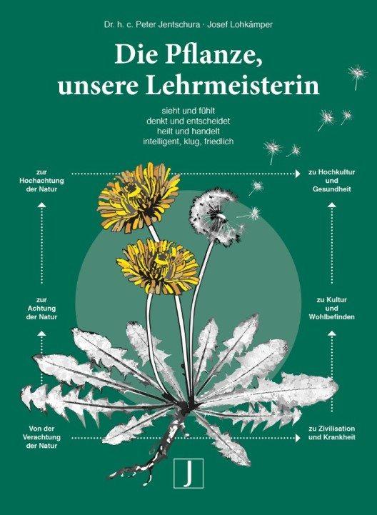 """""""Die Pflanze, unsere Lehrmeisterin"""" (Bild: © obs/Jentschura International GmbH/Verlag Jentschura)"""