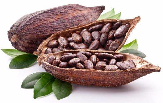 Unter Eroberer Hernando Cortez entdeckten die Spanier 1519 in Mexiko das Geheimnis der Kakaobohnen. (Bild: © Valentyn Volkov - shutterstock.com)