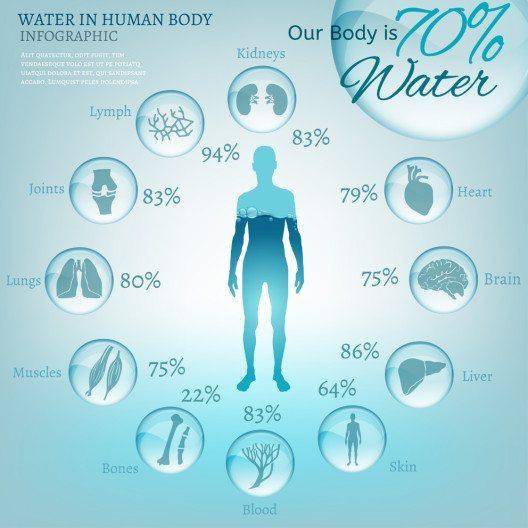 Wir sind im wahrsten Sinne des Wortes nah am Wasser gebaut. (Bild: Double Brain – Shutterstock.com)