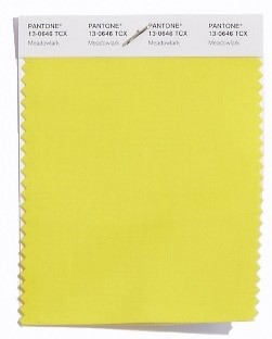 PANTONE 13-0646 Meadowlark: Das kühne und lebendige Meadowlark, ein zuversichtlicher und frischer Gelbton, hebt die Frühjahrsphase 2018 hervor, die mit Freude glänzt und die Welt um uns herum erleuchtet.