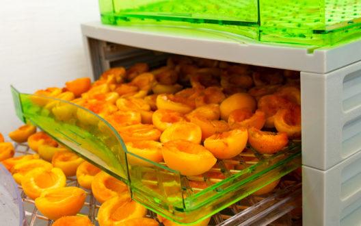 Gesunde Snacks mit einem Dörrautomat herstellen (Bild: skimin0k - shutterstock.com)