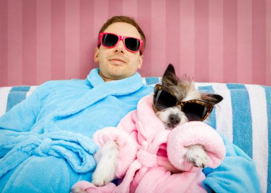 feature post image for Wellness mit und für den Hund